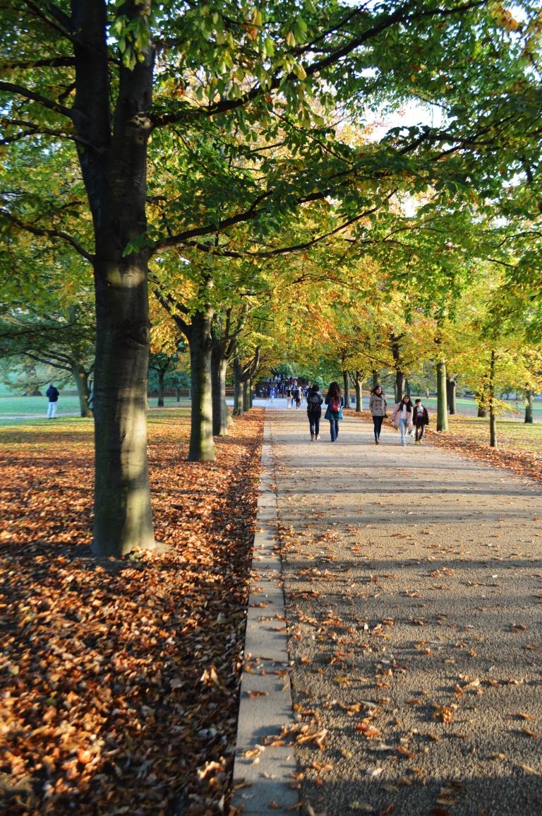 Greenwich park 099